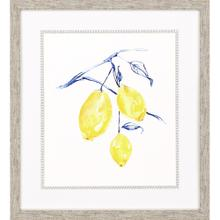 Watercolor Lemons I