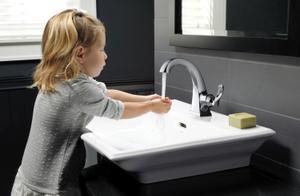 Chrome Single Handle Centerset Faucet Product Image