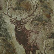 See Details - Wilderness Elk