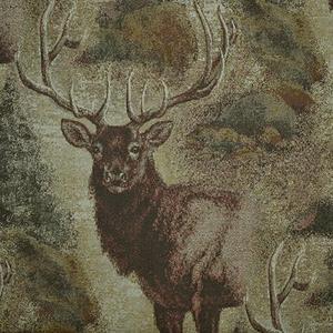 Marshfield - Wilderness Elk