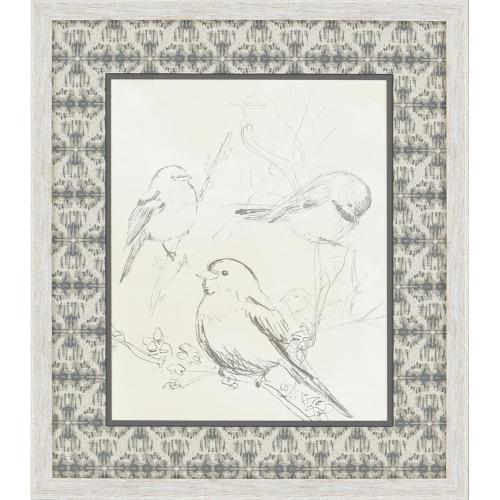 Songbirds S/2