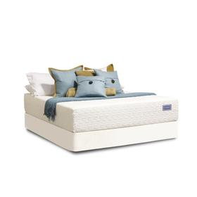 All-Natural Talalay Latex Collection - Beautiful All-Natural - Twin