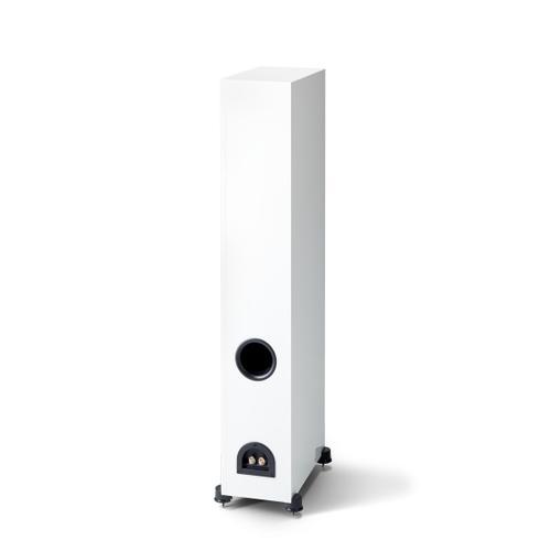 Monitor SE 6000F