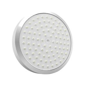 Polished Nickel - Natural Single Function Shower Head