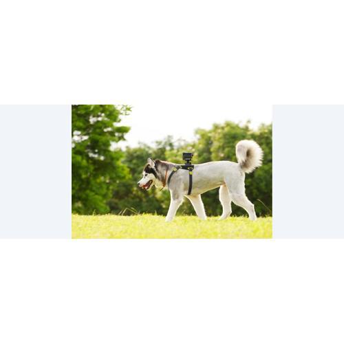 AKA-DM1 Dog Harness For Action Cam