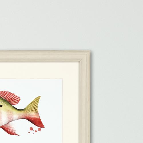 Chromatic Catch II