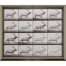 Product Image - Elk Trotting