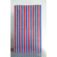 Product Image - 3' x 5' Cotton Chindi Striped Rug, Red & Blue
