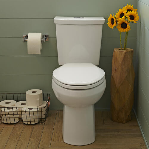 H2Option 15-inch Round Front Dual Flush Toilet - Linen