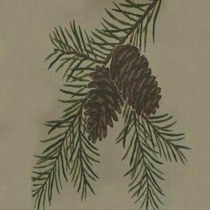 Marshfield - Evergreen