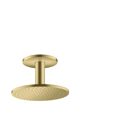 Brushed Brass Overhead shower 250 2jet with ceiling connection