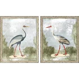 Cranes I S/2