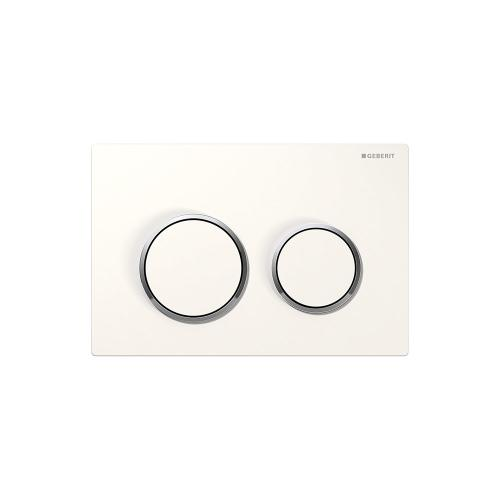 Omega20 Dual-flush plates for Omega series in-wall toilet systems White with polished chrome accent Finish