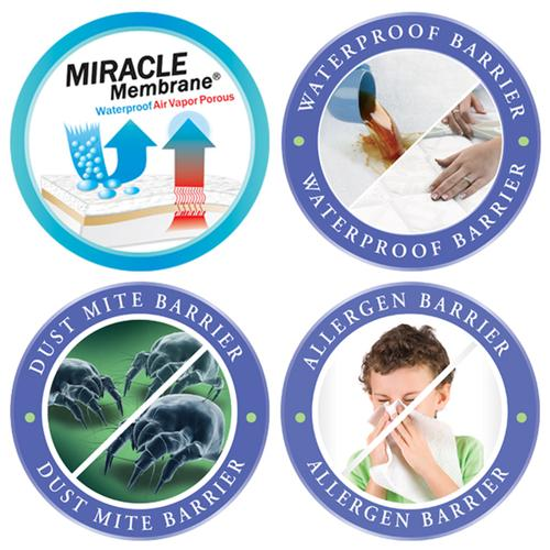 Protect-A-Bed - Allergy Protection Kit