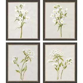 White Field Flowers S/4