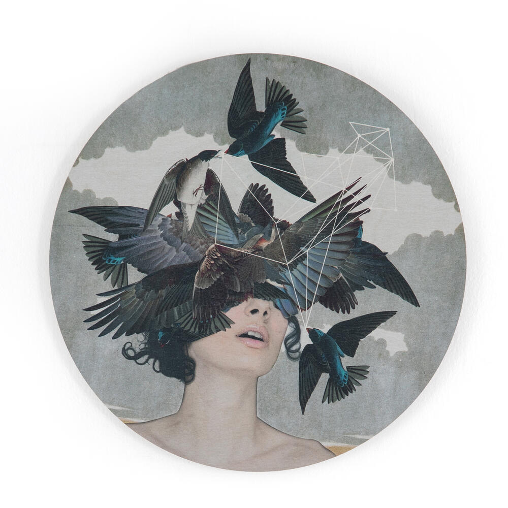 Swallow Blind I, Alexandra Gallagher