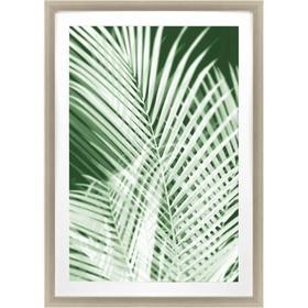 Palm Shadows Green I