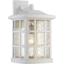 Product Image - Stonington Outdoor Lantern in White Lustre