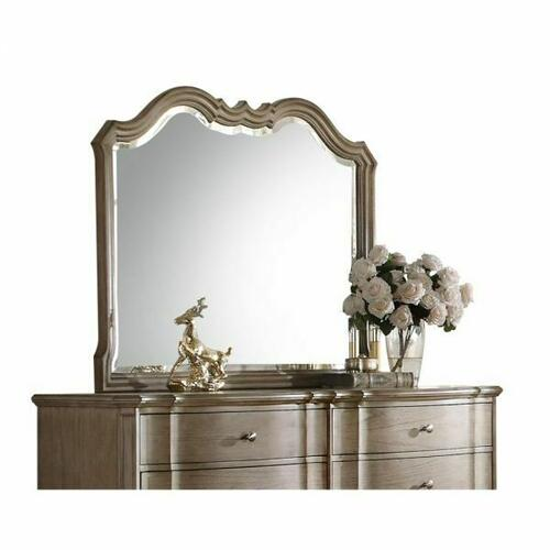 ACME Chelmsford Mirror - 26054 - Antique Taupe