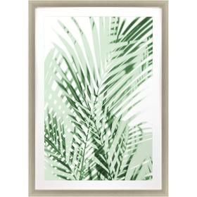 Palm Shadows Green II