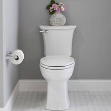 See Details - Edgemere Toilet Paper Holder  American Standard - Polished Chrome
