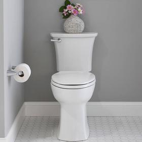 Edgemere Toilet Paper Holder  American Standard - Polished Chrome