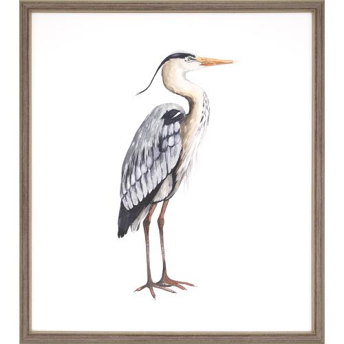 Sea Bird V