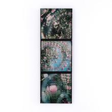 Rose Series By Annie Spratt