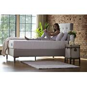 The Ultimate Collection - World's Best Bed - Twin XL Product Image
