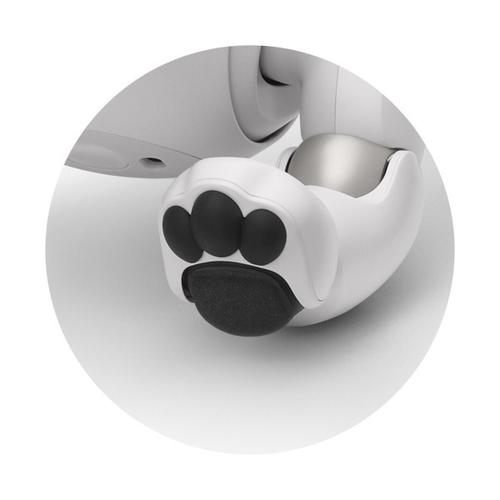Gallery - Paw Pads