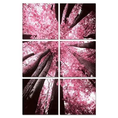 Gallery - Modrest Blossom Trees 6-Panel Photo on Canvas
