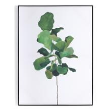Fiddle Leaf Fig By Jess Engle
