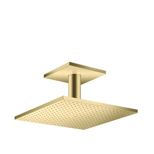 Brushed Brass Overhead shower 300/300 1jet with ceiling connection