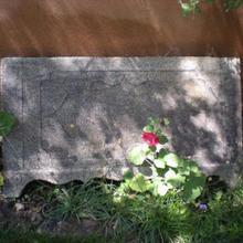 Antique Decorative Granite Slab