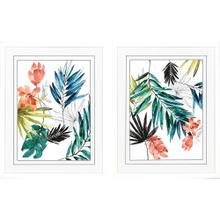 Tropical Composition S/2