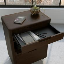 6817 Mobile File Cabinet in Environmental