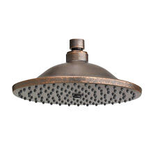 Traditional Rain Showerheads  American Standard - Oil Rubbed Bronze
