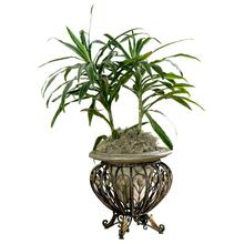View Product - Made of cast stone set in a metal base. Suitable for displaying live plants.
