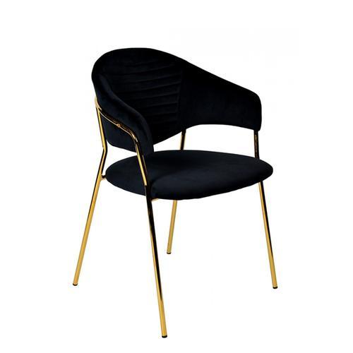 VIG Furniture - Modrest Trevor Modern Black Velvet & Gold Dining Chair (Set of 2)