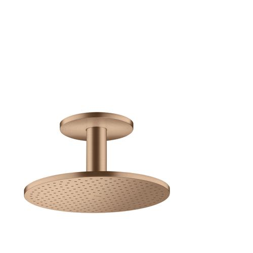 Brushed Red Gold Overhead shower 300 1jet with ceiling connection