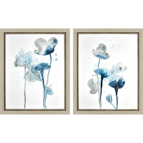 Midnight Blossom II S/2