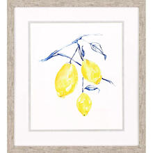 Watercolor Lemons I
