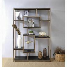 ACME Scaola Bookshelf - 92655 - Industrial, Contemporary - Metal Tube, Veneer (PVC), PB - Rustic Gray Oak and Champagne