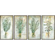 Herbs S/4
