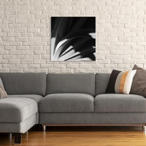 Sepia Palm
