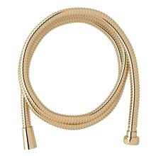 English Gold Hose