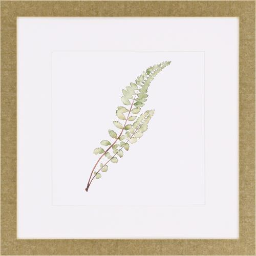 Product Image - Watercolor Leaf Study I