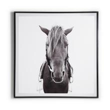 "48""x48"" Size Paper + Black Maple Frame Style Horse"