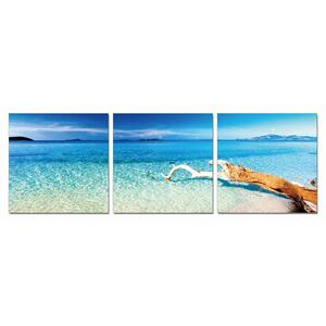 Gallery - Modrest Driftwood 3-Panel Photo