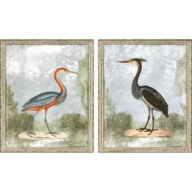 Cranes II S/2